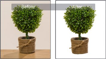 Tree Masking (2)